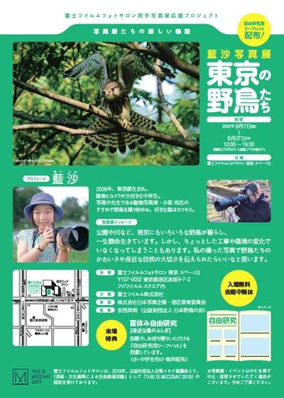 藍沙写真展「東京の野鳥たち」リーフレット
